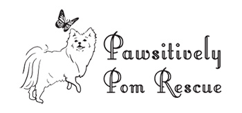 Pawsitively Pom Rescue Inc.