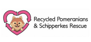 Recycled Pomeranians & Schipperkes Rescue